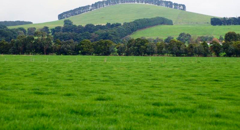 Terang Victoria Australia, Terang, Corangamite, Victoria ...