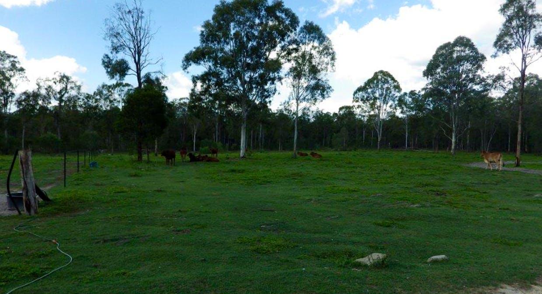 133 Cawthrays Road, Miriam Vale, QLD, 4677 - Image 24