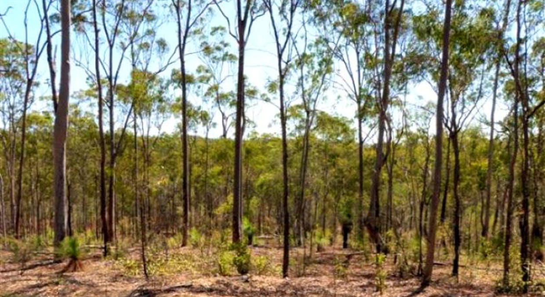 79 William Road, Beecher, Beecher, QLD, 4680 - Image 6
