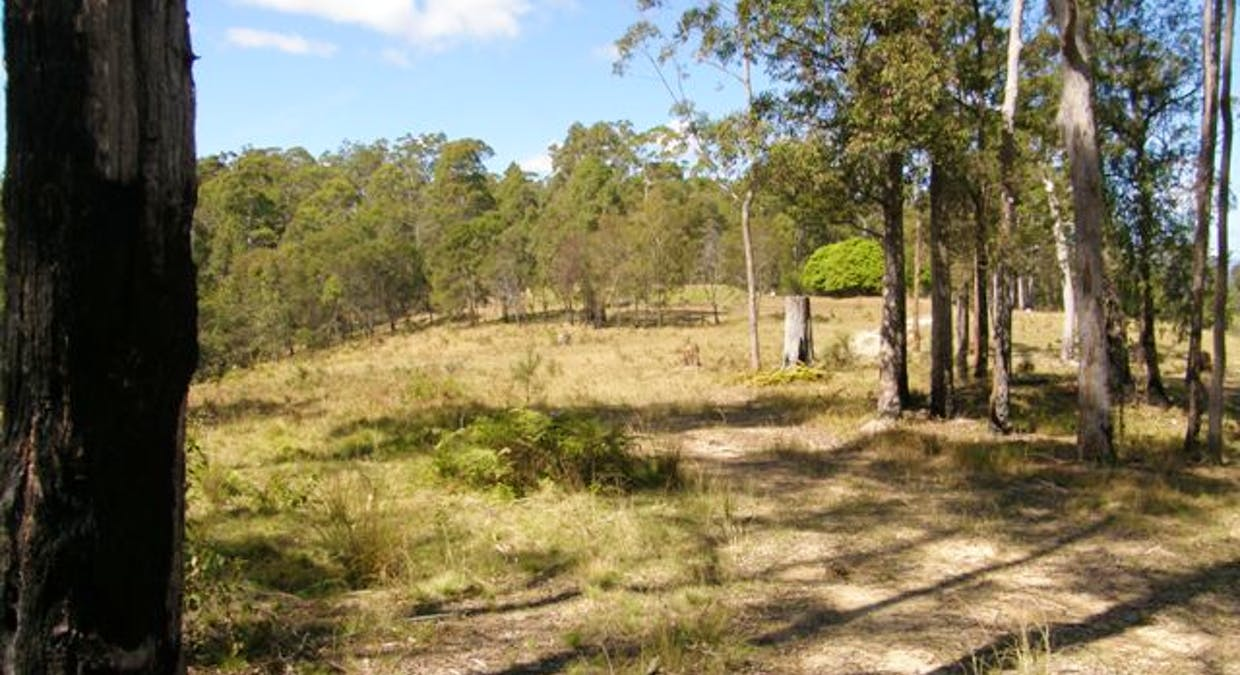 2621 Blacksmith Shop Road, Newton Boyd, NSW, 2370 - Image 20
