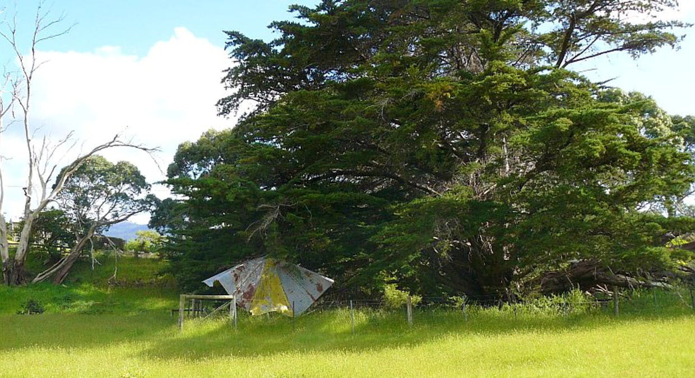 Lot 1 Tasmans Arch Road, Eaglehawk Neck, TAS, 7179 - Image 8