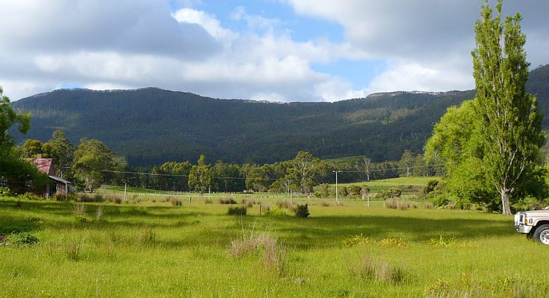 Lot 1 Tasmans Arch Road, Eaglehawk Neck, TAS, 7179 - Image 13