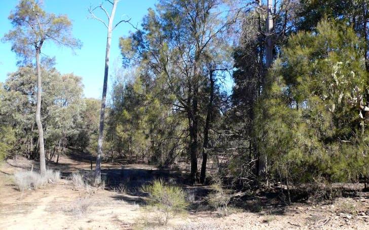 LOT 1 Mccaskers Road, Tara, QLD, 4421 - Image 1