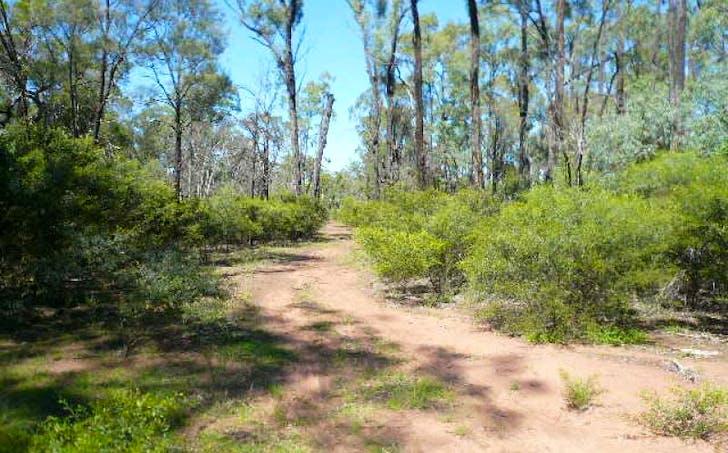 234 Happiness Road, Tara, QLD, 4421 - Image 1