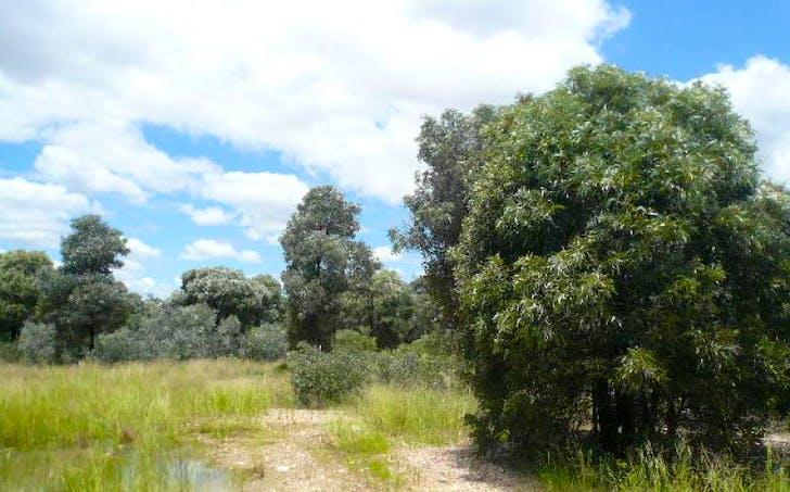 Lot 25 Western Road, Tara, QLD, 4421 - Image 1