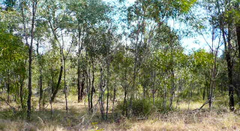 LOT 96 Machaness Road, Tara, QLD, 4421 - Image 3