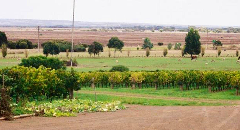 Section 328 Hundred Of Menzies, Kingscote, SA, 5223 - Image 6