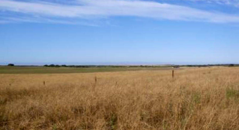 105 and 106 Mcintosh Way, Meningie, SA, 5264 - Image 4