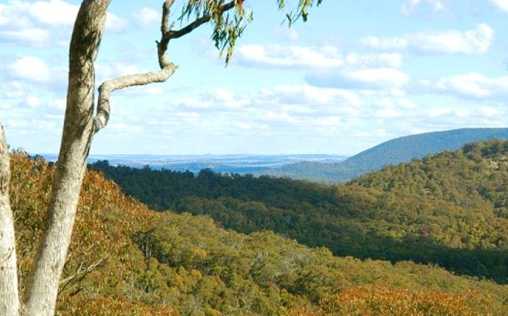 Lot 2 Thunderbolts Cave Road, Armidale, NSW, 2350 - Image 1