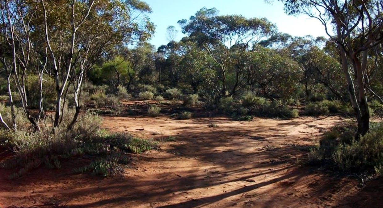 Section 544 O'callaghan Road, Monash, SA, 5342 - Image 1